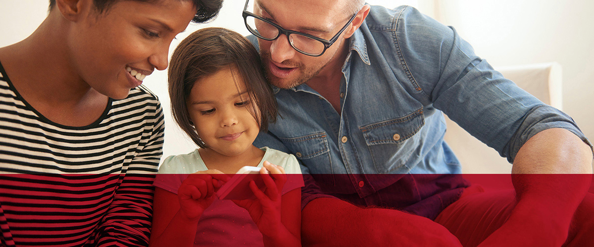 Hollister Incoroprated homepage header image